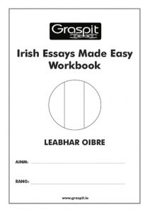 Irish Essays Made Easy